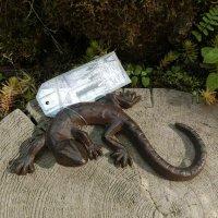 Salamander Gecko Echse Gusseisen Eidechse...